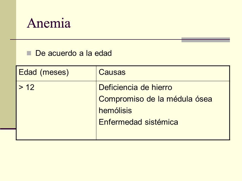 Anemia De acuerdo a la edad Edad (meses)Causas > 12Deficiencia de hierro Compromiso de la médula ósea hemólisis Enfermedad sistémica