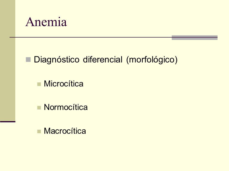 Anemia Diagnóstico diferencial (morfológico) Microcítica Normocítica Macrocítica