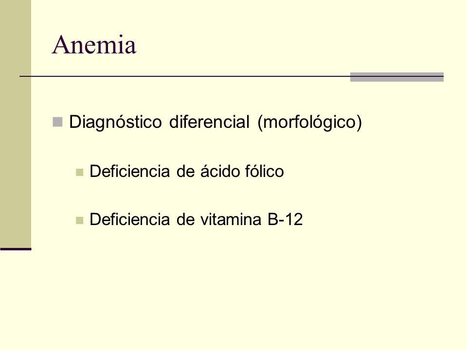 Anemia Diagnóstico diferencial (morfológico) Deficiencia de ácido fólico Deficiencia de vitamina B-12