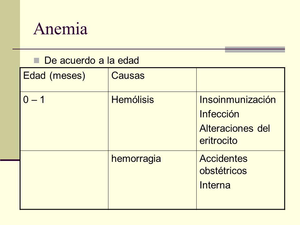 Anemia De acuerdo a la edad Edad (meses)Causas 0 – 1HemólisisInsoinmunización Infección Alteraciones del eritrocito hemorragiaAccidentes obstétricos I