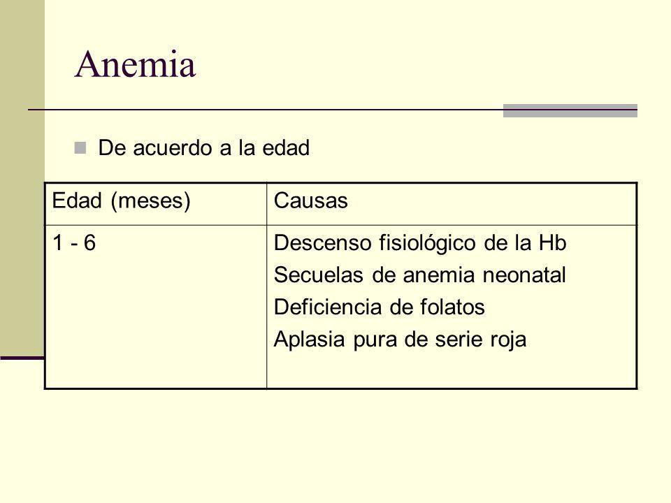 Anemia De acuerdo a la edad Edad (meses)Causas 1 - 6Descenso fisiológico de la Hb Secuelas de anemia neonatal Deficiencia de folatos Aplasia pura de s