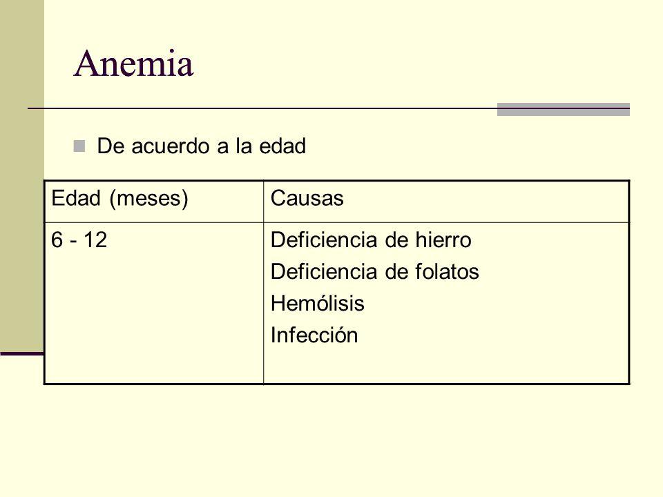 Anemia De acuerdo a la edad Edad (meses)Causas 6 - 12Deficiencia de hierro Deficiencia de folatos Hemólisis Infección
