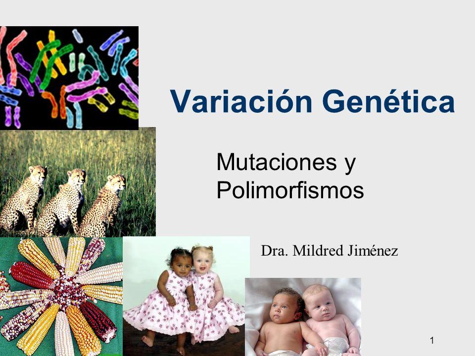 1 Variación Genética Mutaciones y Polimorfismos Dra. Mildred Jiménez