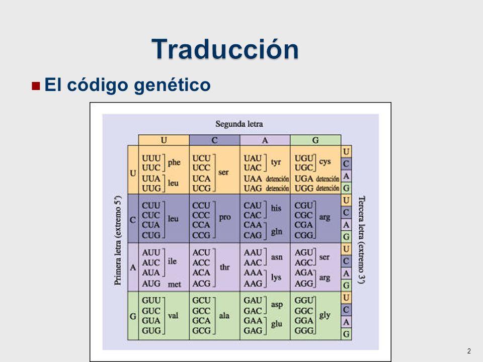 El código genético 2