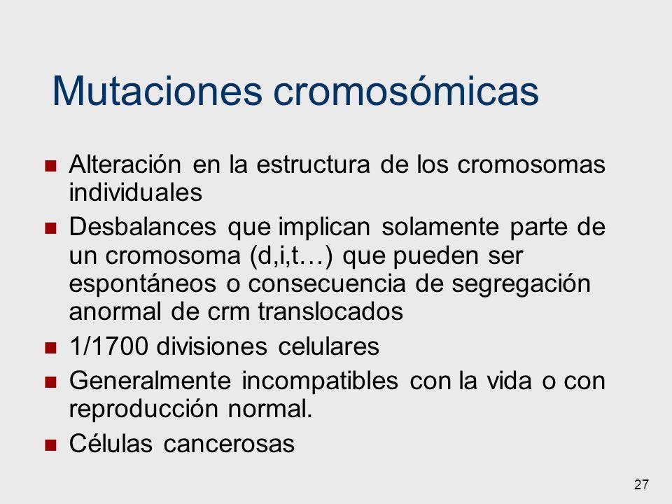 27 Mutaciones cromosómicas Alteración en la estructura de los cromosomas individuales Desbalances que implican solamente parte de un cromosoma (d,i,t…