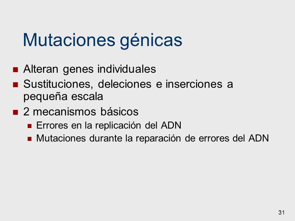 31 Mutaciones génicas Alteran genes individuales Sustituciones, deleciones e inserciones a pequeña escala 2 mecanismos básicos Errores en la replicaci