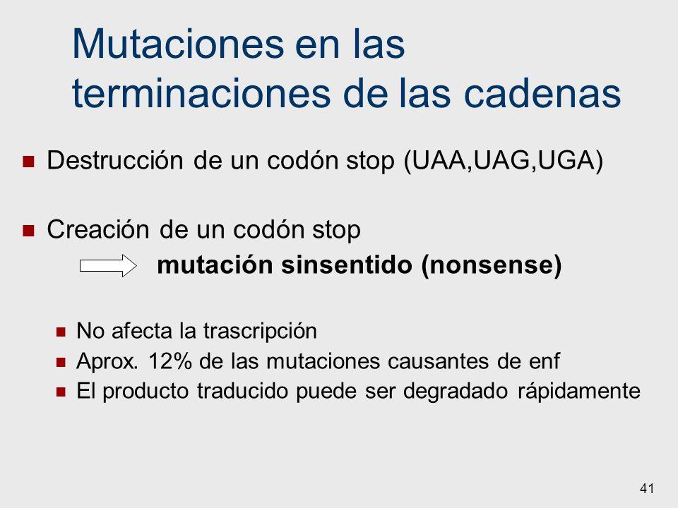 41 Mutaciones en las terminaciones de las cadenas Destrucción de un codón stop (UAA,UAG,UGA) Creación de un codón stop mutación sinsentido (nonsense)