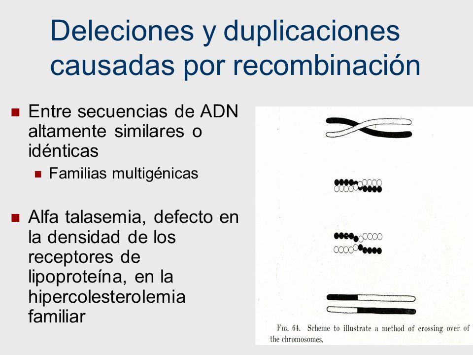 46 Deleciones y duplicaciones causadas por recombinación Entre secuencias de ADN altamente similares o idénticas Familias multigénicas Alfa talasemia,