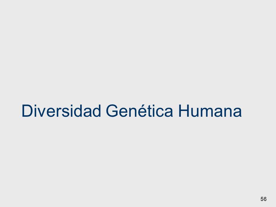56 Diversidad Genética Humana