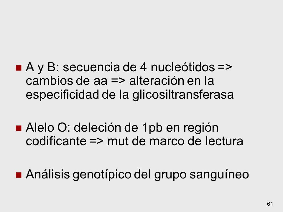 61 A y B: secuencia de 4 nucleótidos => cambios de aa => alteración en la especificidad de la glicosiltransferasa Alelo O: deleción de 1pb en región c