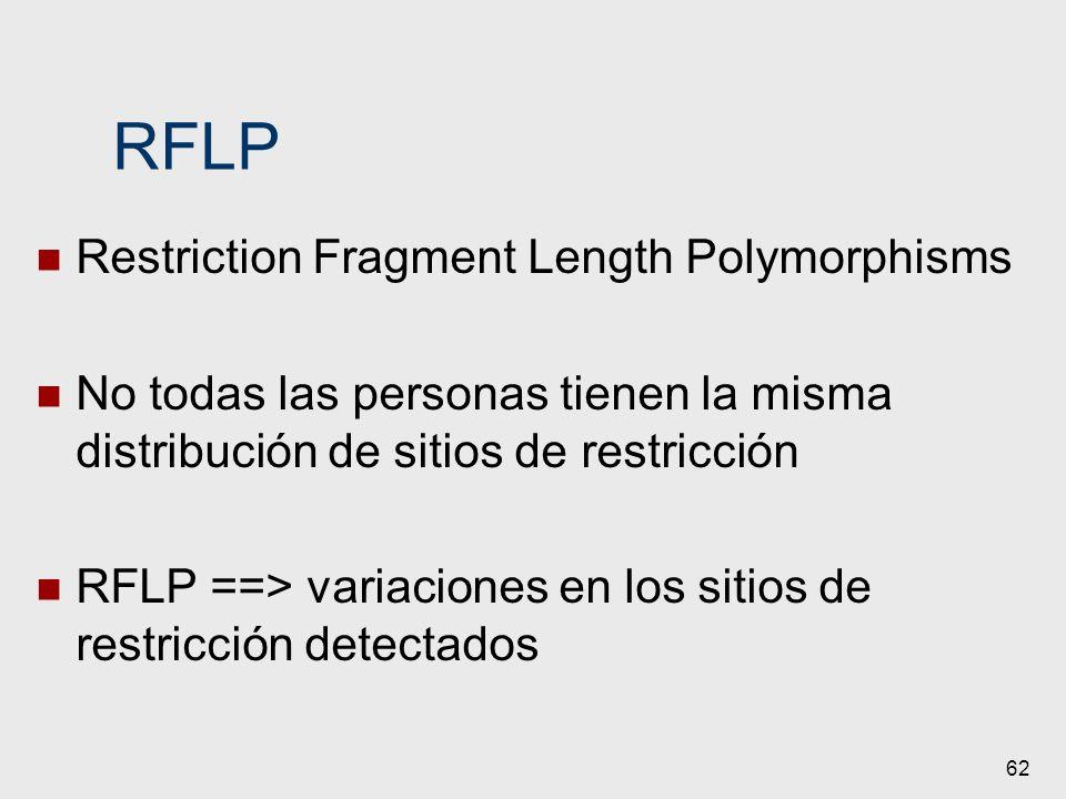 62 RFLP Restriction Fragment Length Polymorphisms No todas las personas tienen la misma distribución de sitios de restricción RFLP ==> variaciones en