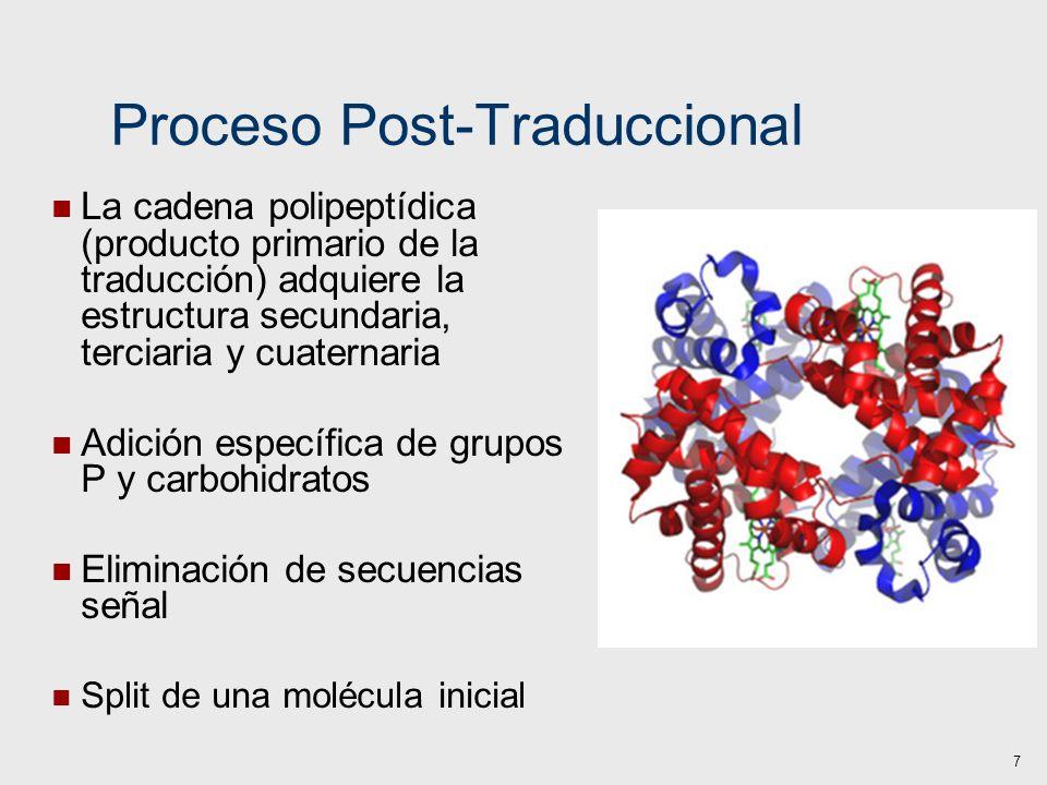 Proceso Post-Traduccional La cadena polipeptídica (producto primario de la traducción) adquiere la estructura secundaria, terciaria y cuaternaria Adic