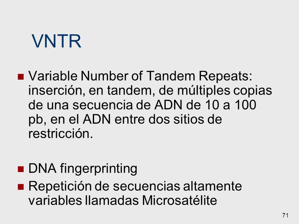 71 VNTR Variable Number of Tandem Repeats: inserción, en tandem, de múltiples copias de una secuencia de ADN de 10 a 100 pb, en el ADN entre dos sitio