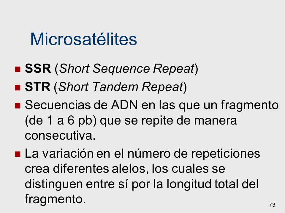 Microsatélites SSR (Short Sequence Repeat) STR (Short Tandem Repeat) Secuencias de ADN en las que un fragmento (de 1 a 6 pb) que se repite de manera c