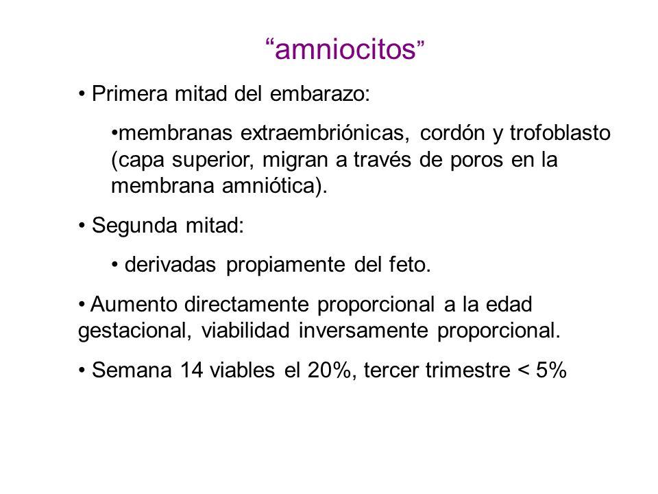 amniocitos Primera mitad del embarazo: membranas extraembriónicas, cordón y trofoblasto (capa superior, migran a través de poros en la membrana amniót
