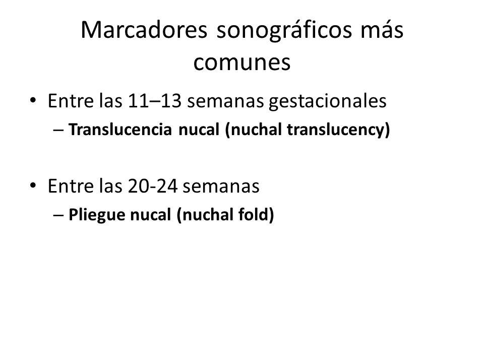 Marcadores sonográficos más comunes Entre las 11–13 semanas gestacionales – Translucencia nucal (nuchal translucency) Entre las 20-24 semanas – Pliegu