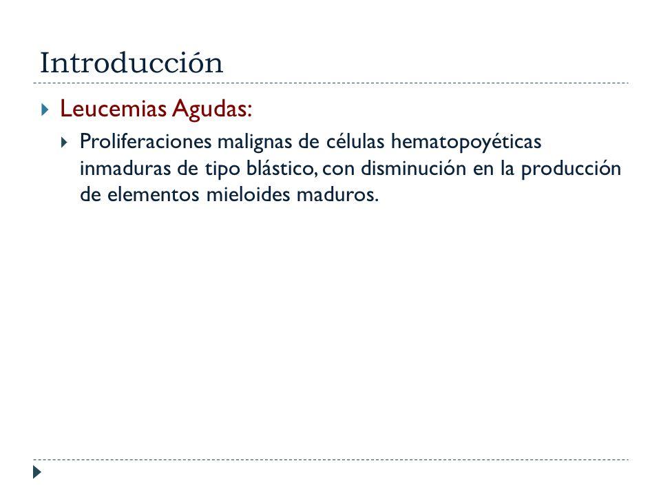 Introducción Leucemias Agudas: Proliferaciones malignas de células hematopoyéticas inmaduras de tipo blástico, con disminución en la producción de ele
