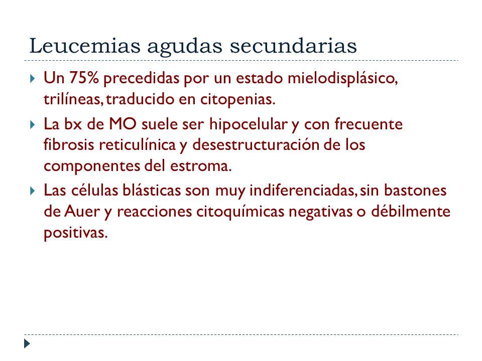 Leucemias agudas secundarias Un 75% precedidas por un estado mielodisplásico, trilíneas, traducido en citopenias. La bx de MO suele ser hipocelular y