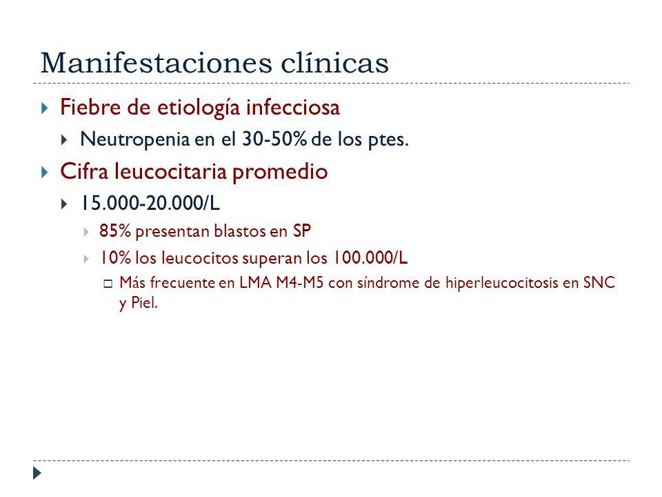 Manifestaciones clínicas Fiebre de etiología infecciosa Neutropenia en el 30-50% de los ptes. Cifra leucocitaria promedio 15.000-20.000/L 85% presenta