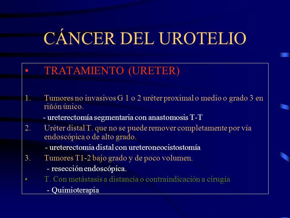 CÁNCER DEL UROTELIO TRATAMIENTO (URETER) 1.Tumores no invasivos G 1 o 2 uréter proximal o medio o grado 3 en riñón único. - ureterectomía segmentaria