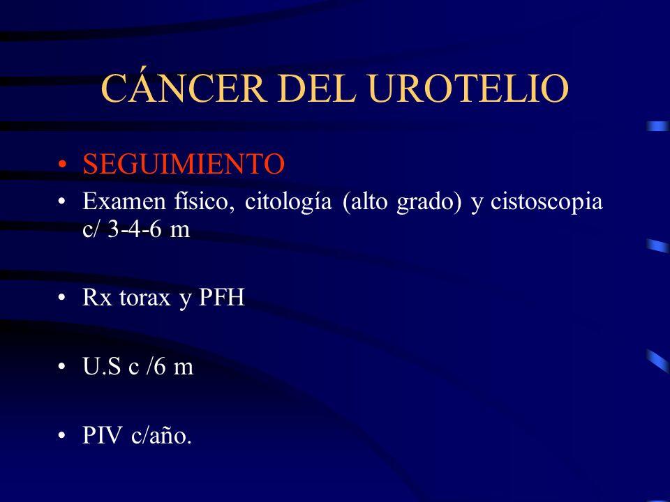 CÁNCER DEL UROTELIO SEGUIMIENTO Examen físico, citología (alto grado) y cistoscopia c/ 3-4-6 m Rx torax y PFH U.S c /6 m PIV c/año.