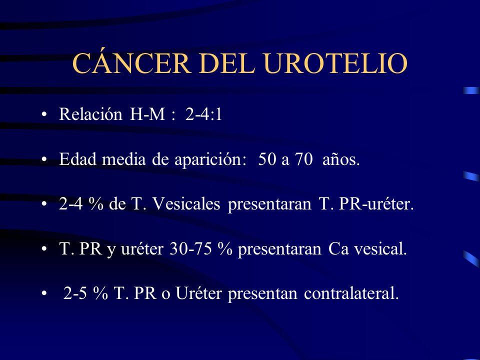 CÁNCER DEL UROTELIO Relación H-M : 2-4:1 Edad media de aparición: 50 a 70 años. 2-4 % de T. Vesicales presentaran T. PR-uréter. T. PR y uréter 30-75 %