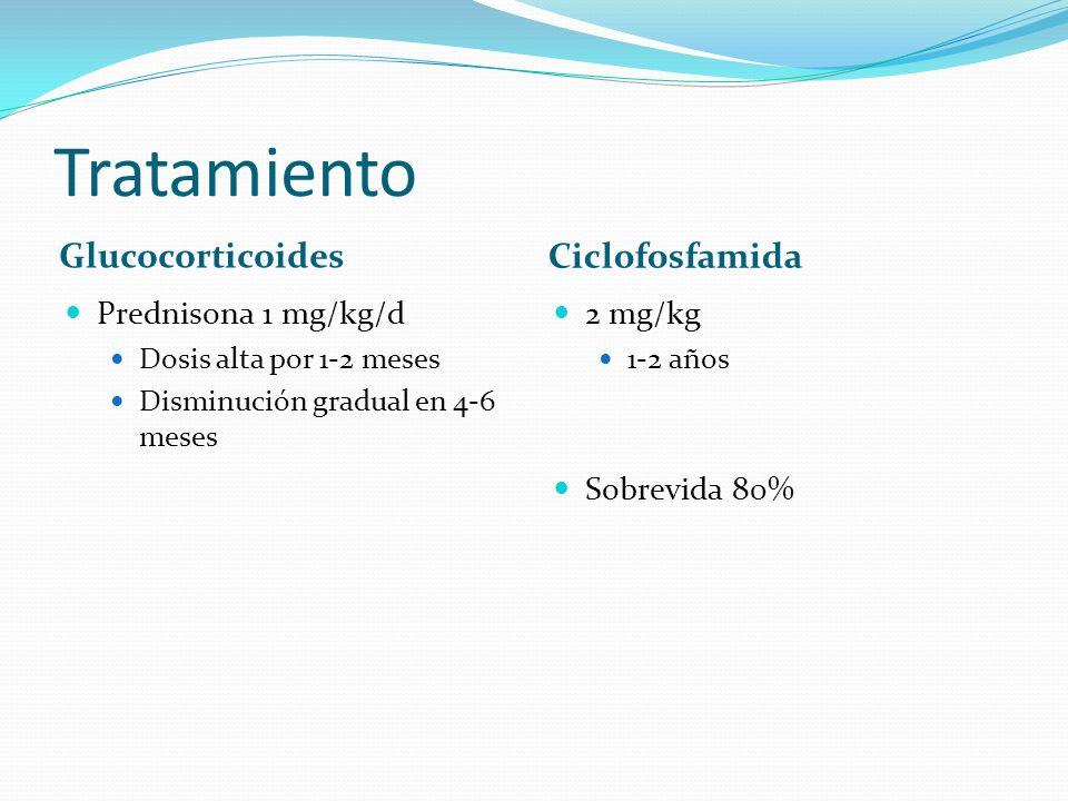 Tratamiento Glucocorticoides Ciclofosfamida Prednisona 1 mg/kg/d Dosis alta por 1-2 meses Disminución gradual en 4-6 meses 2 mg/kg 1-2 años Sobrevida