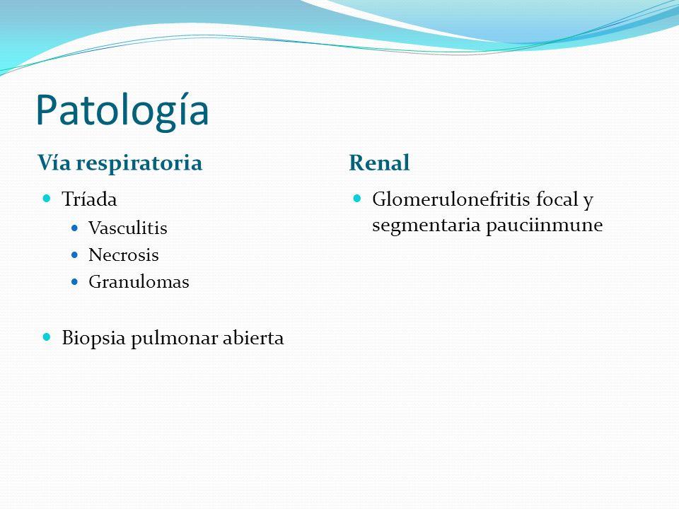 Patología Vía respiratoria Renal Tríada Vasculitis Necrosis Granulomas Biopsia pulmonar abierta Glomerulonefritis focal y segmentaria pauciinmune