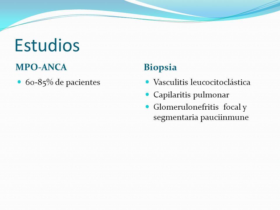 Estudios MPO-ANCA Biopsia 60-85% de pacientes Vasculitis leucocitoclástica Capilaritis pulmonar Glomerulonefritis focal y segmentaria pauciinmune
