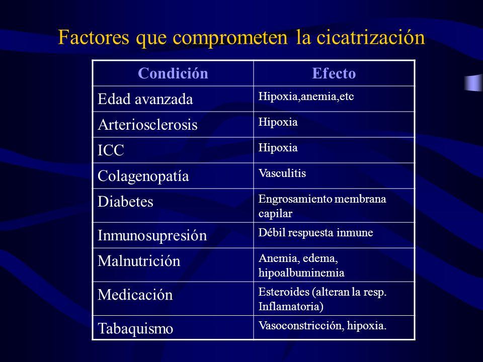 Factores que comprometen la cicatrización CondiciónEfecto Edad avanzada Hipoxia,anemia,etc Arteriosclerosis Hipoxia ICC Hipoxia Colagenopatía Vasculit