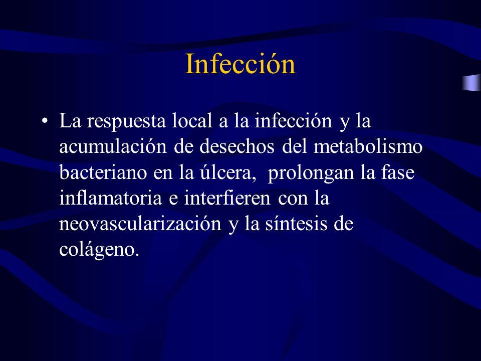 Infección La respuesta local a la infección y la acumulación de desechos del metabolismo bacteriano en la úlcera, prolongan la fase inflamatoria e int