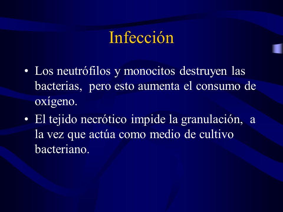 Infección Los neutrófilos y monocitos destruyen las bacterias, pero esto aumenta el consumo de oxígeno. El tejido necrótico impide la granulación, a l
