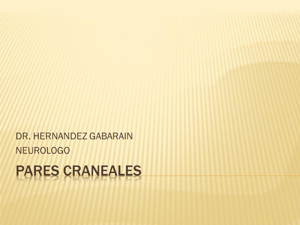 DR. HERNANDEZ GABARAIN NEUROLOGO