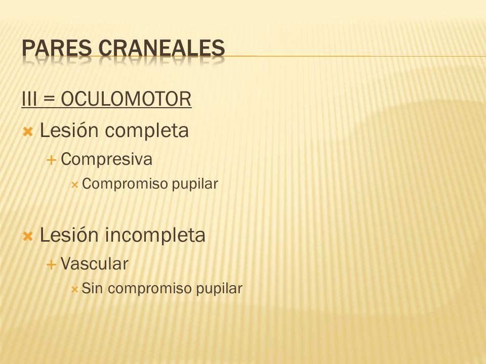 III = OCULOMOTOR Lesión completa Compresiva Compromiso pupilar Lesión incompleta Vascular Sin compromiso pupilar