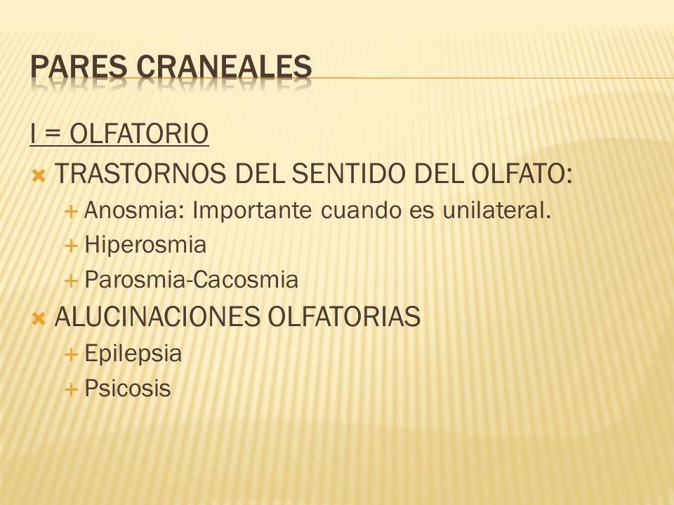 I = OLFATORIO TRASTORNOS DEL SENTIDO DEL OLFATO: Anosmia: Importante cuando es unilateral. Hiperosmia Parosmia-Cacosmia ALUCINACIONES OLFATORIAS Epile