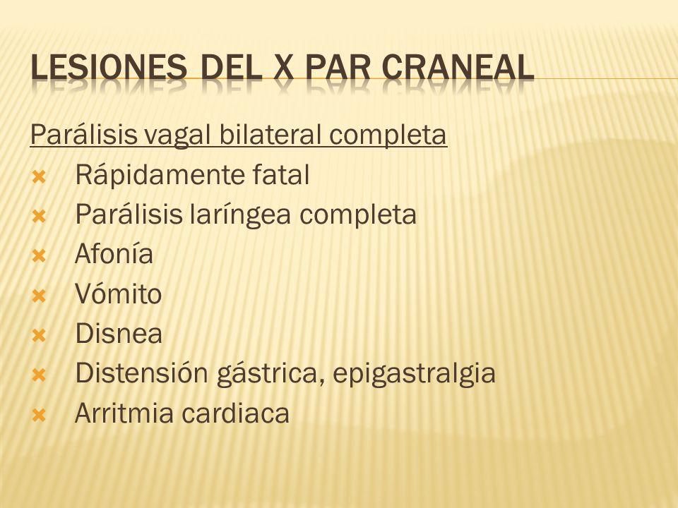 Parálisis vagal bilateral completa Rápidamente fatal Parálisis laríngea completa Afonía Vómito Disnea Distensión gástrica, epigastralgia Arritmia card