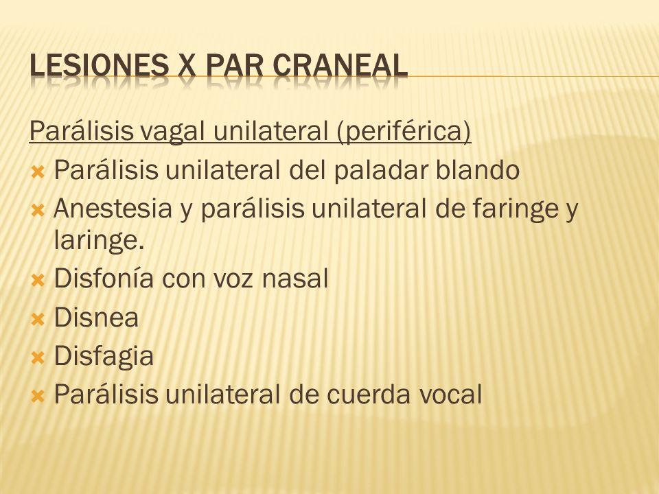 Parálisis vagal unilateral (periférica) Parálisis unilateral del paladar blando Anestesia y parálisis unilateral de faringe y laringe. Disfonía con vo