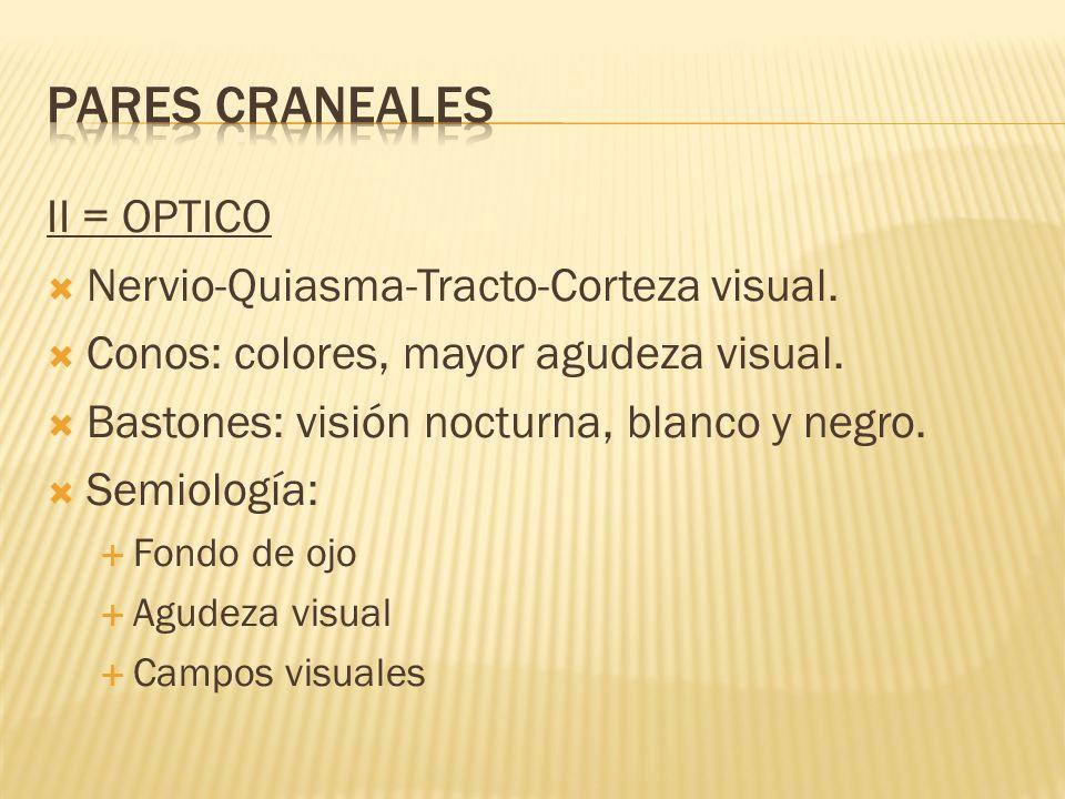 II = OPTICO Nervio-Quiasma-Tracto-Corteza visual. Conos: colores, mayor agudeza visual. Bastones: visión nocturna, blanco y negro. Semiología: Fondo d