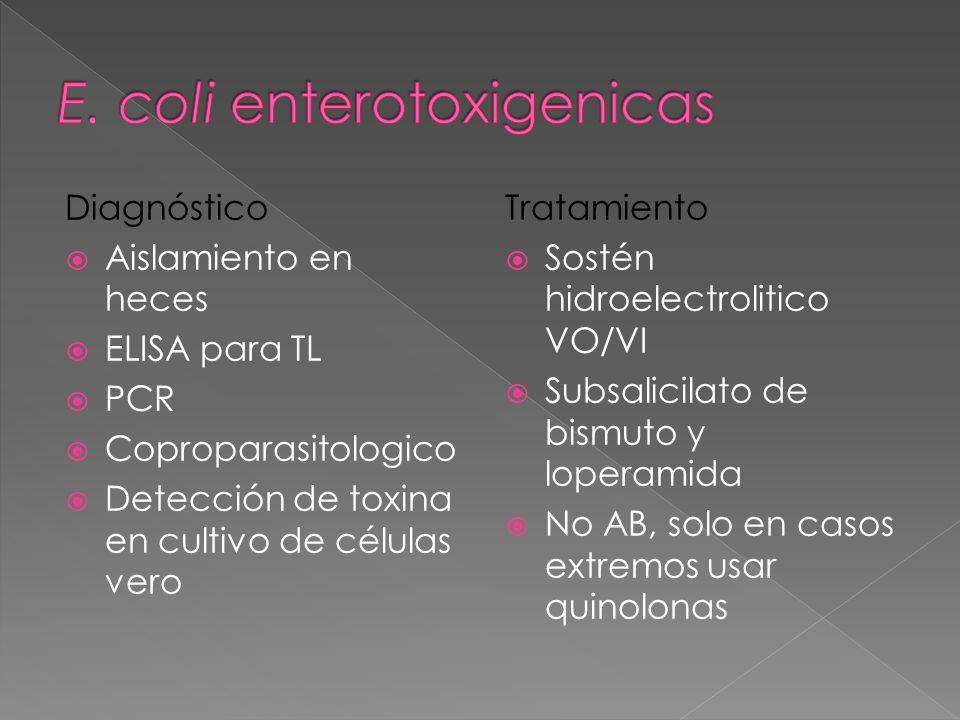 Diagnóstico Aislamiento en heces ELISA para TL PCR Coproparasitologico Detección de toxina en cultivo de células vero Tratamiento Sostén hidroelectrol