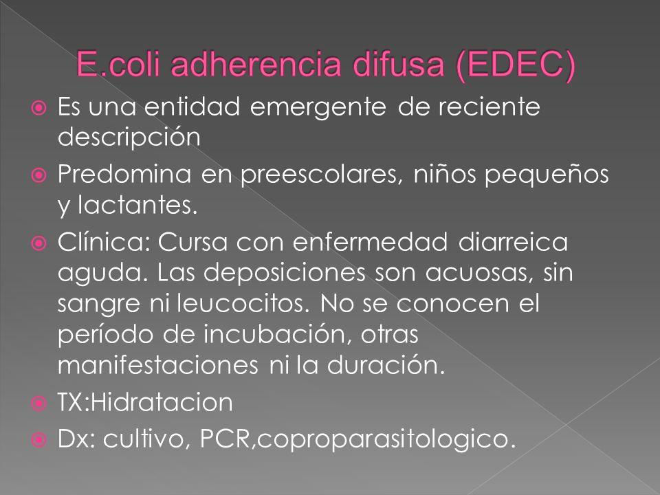 Es una entidad emergente de reciente descripción Predomina en preescolares, niños pequeños y lactantes. Clínica: Cursa con enfermedad diarreica aguda.