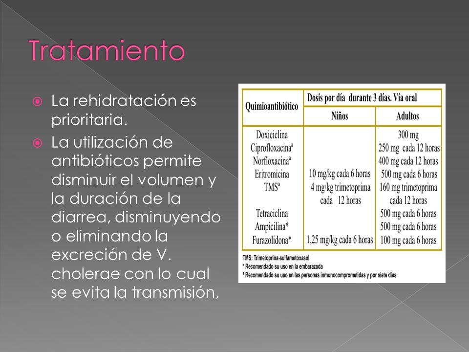 La rehidratación es prioritaria. La utilización de antibióticos permite disminuir el volumen y la duración de la diarrea, disminuyendo o eliminando la