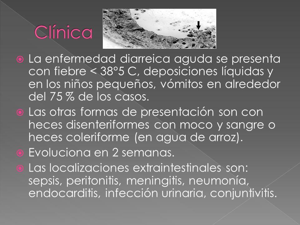 La enfermedad diarreica aguda se presenta con fiebre < 38°5 C, deposiciones líquidas y en los niños pequeños, vómitos en alrededor del 75 % de los cas