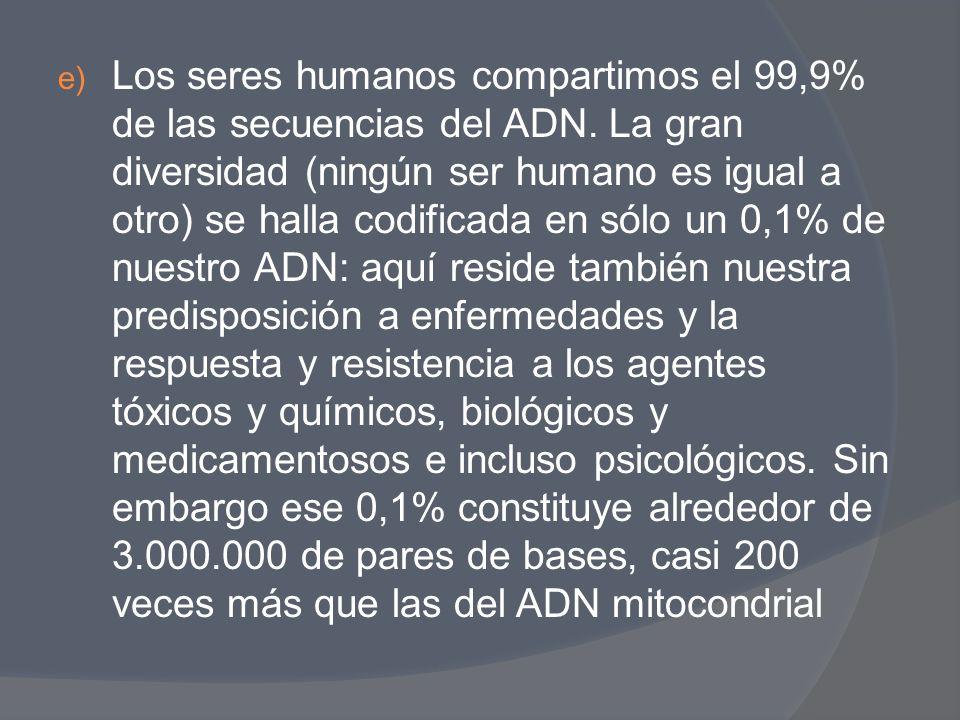 e) Los seres humanos compartimos el 99,9% de las secuencias del ADN. La gran diversidad (ningún ser humano es igual a otro) se halla codificada en sól