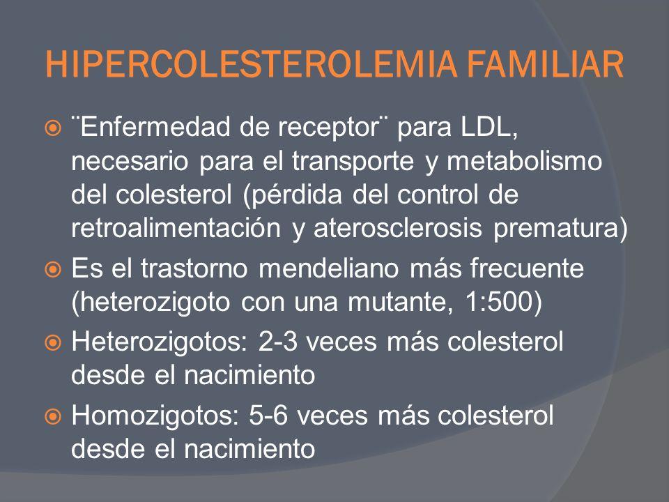 HIPERCOLESTEROLEMIA FAMILIAR ¨Enfermedad de receptor¨ para LDL, necesario para el transporte y metabolismo del colesterol (pérdida del control de retr