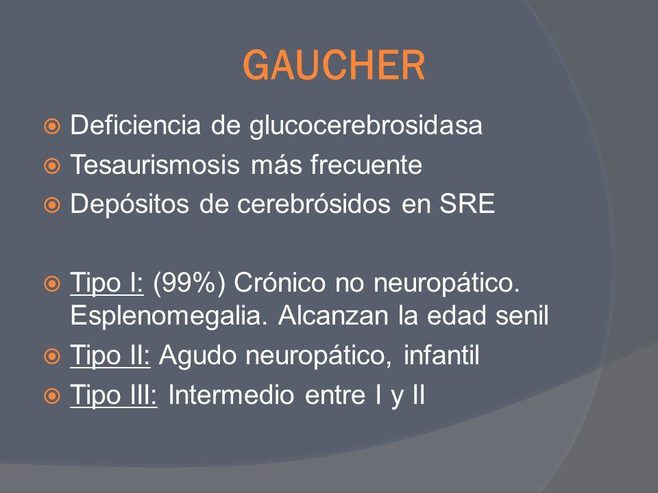 GAUCHER Deficiencia de glucocerebrosidasa Tesaurismosis más frecuente Depósitos de cerebrósidos en SRE Tipo I: (99%) Crónico no neuropático. Esplenome