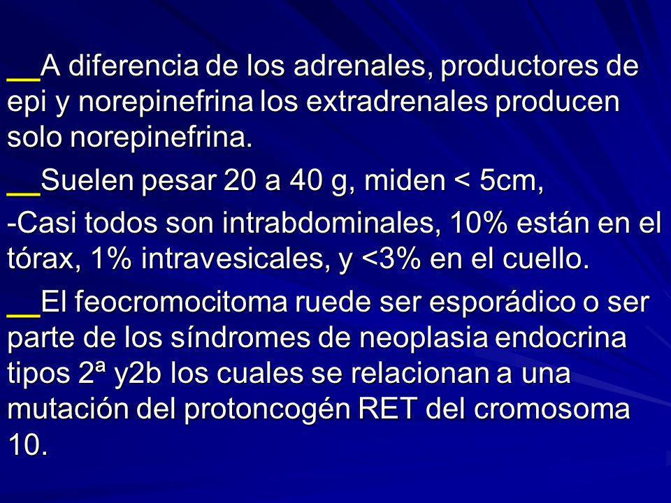 __A diferencia de los adrenales, productores de epi y norepinefrina los extradrenales producen solo norepinefrina. __Suelen pesar 20 a 40 g, miden < 5
