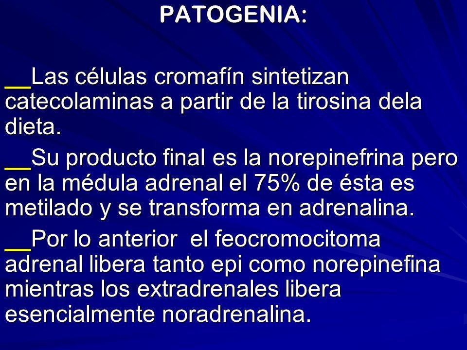 PATOGENIA: __Las células cromafín sintetizan catecolaminas a partir de la tirosina dela dieta. __Su producto final es la norepinefrina pero en la médu