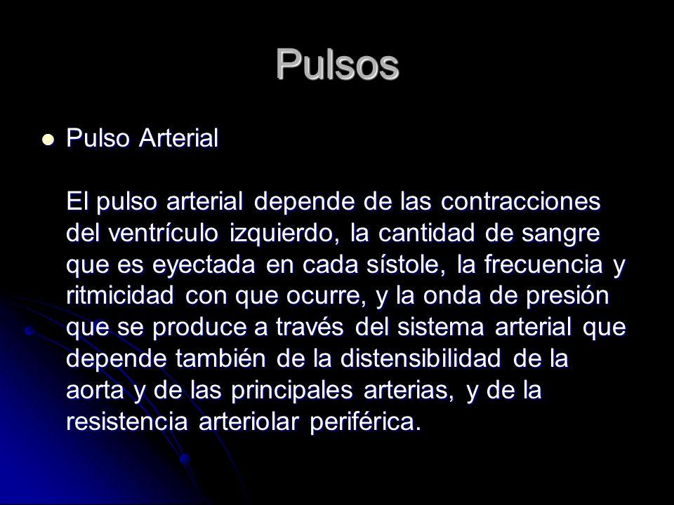 Pulsos Pulso Arterial El pulso arterial depende de las contracciones del ventrículo izquierdo, la cantidad de sangre que es eyectada en cada sístole,
