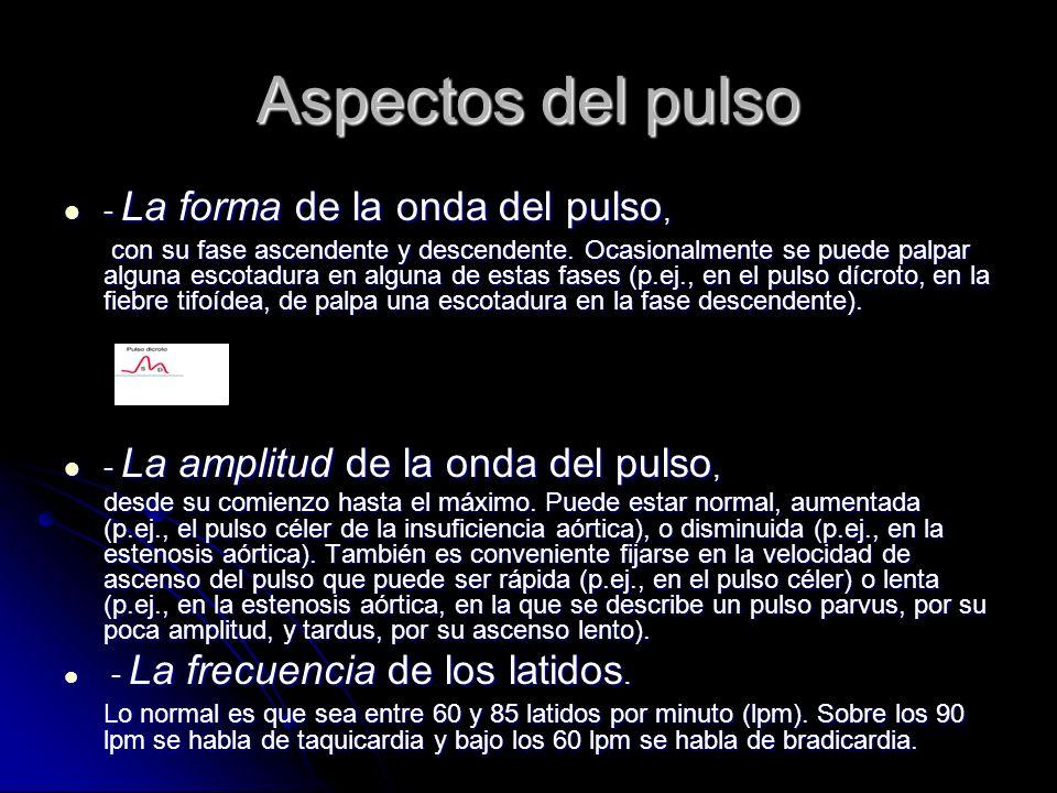 Aspectos del pulso - La forma de la onda del pulso, - La forma de la onda del pulso, con su fase ascendente y descendente. Ocasionalmente se puede pal