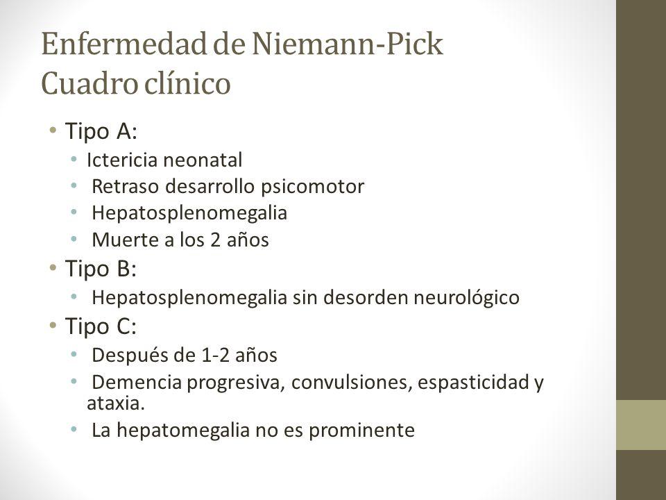 Enfermedad de Niemann-Pick Cuadro clínico Tipo A: Ictericia neonatal Retraso desarrollo psicomotor Hepatosplenomegalia Muerte a los 2 años Tipo B: Hep